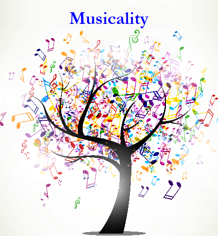 Musicality Lessons